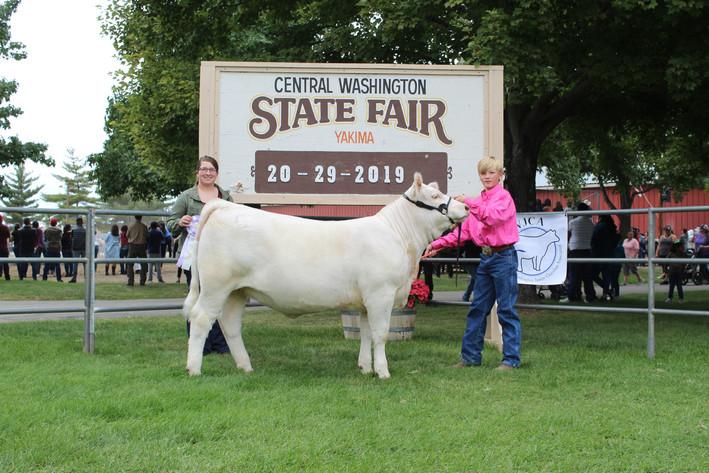 Junior Show Reserve Grand Champion Femal