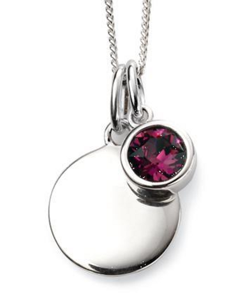 Sterling Silver February Birthstone Disc Necklace