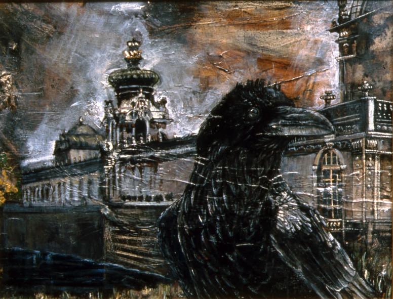 Raven in Dresden