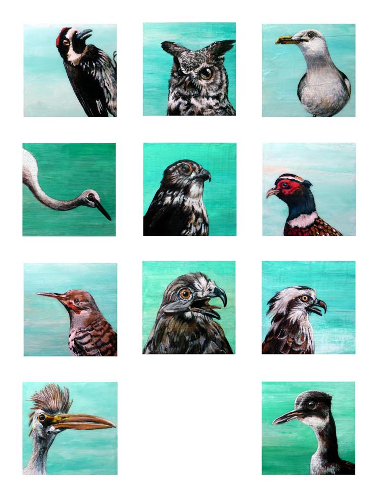 Bird Issues, Nos. 1 - 11