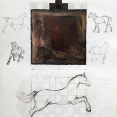 Equine Narrative