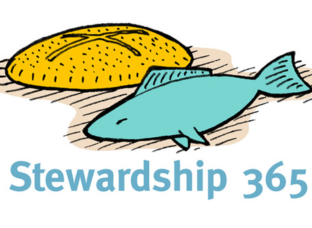 Stewardship 101: How are Philanthropy, Charity and Stewardship different?