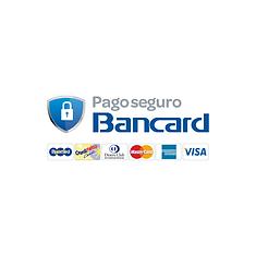 PagoSeguro-Previa.png