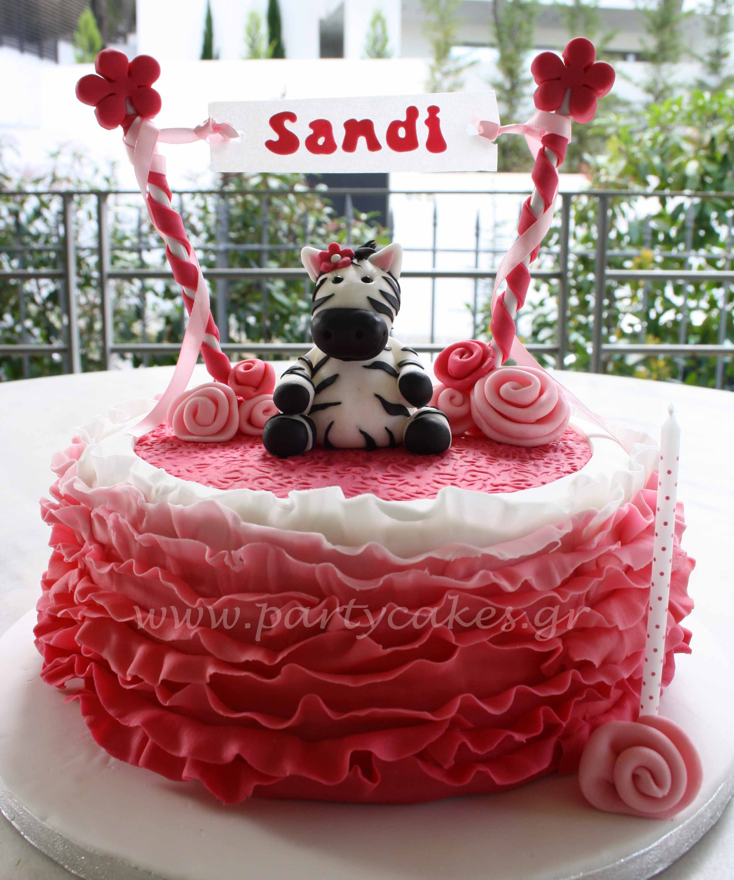 Zebra+Sandi+1+copy.jpg