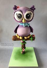 Τούρτα Κουκουβάγια 3D Owl Cake