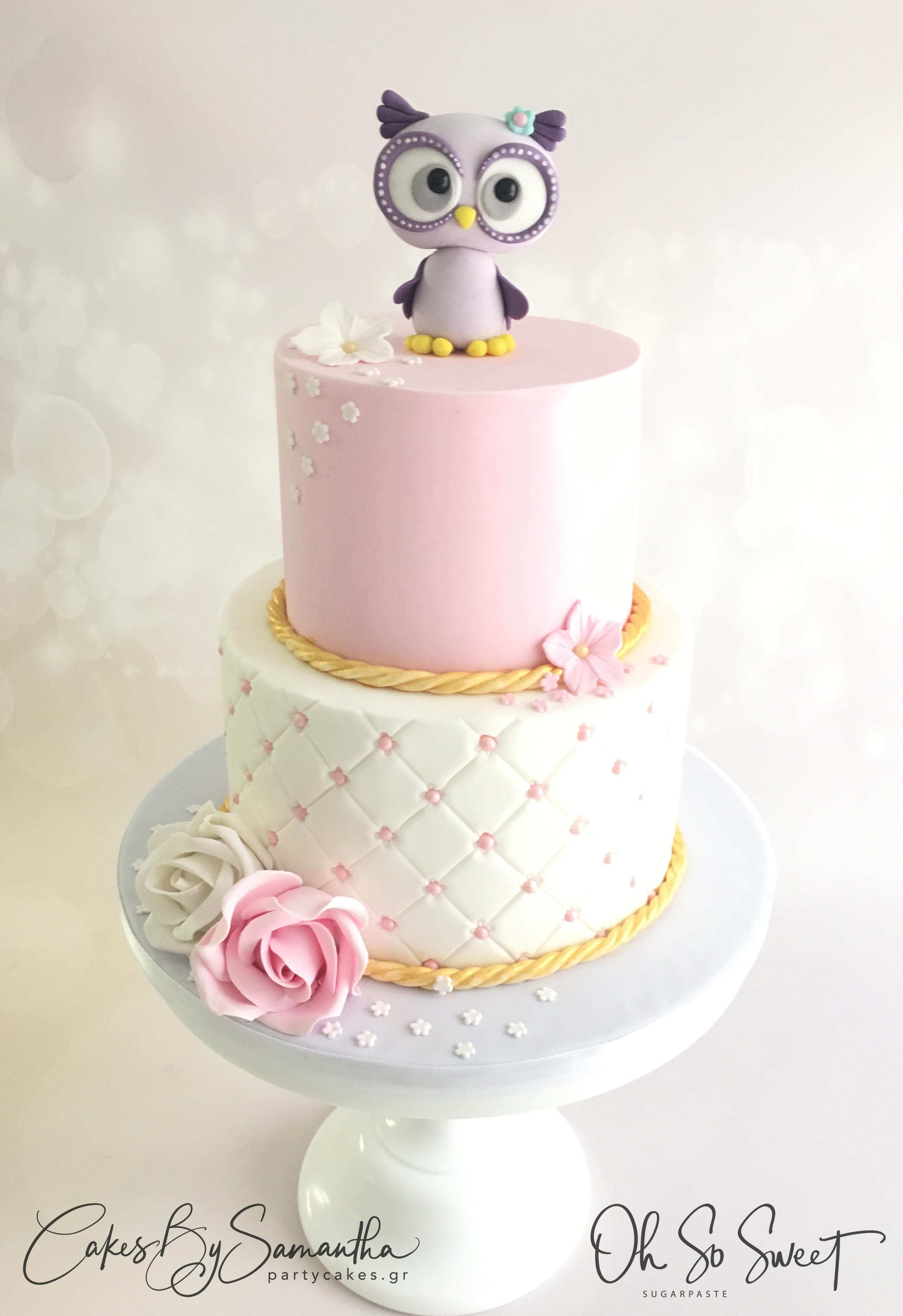 Baby Vagia Cake