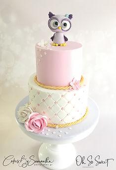 Baby Owl Quilted cake Roses Τουρτα κουκουβάγια καπιτονέ λουλουδια