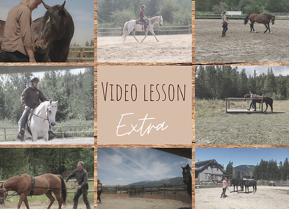 Video Lesson Extra