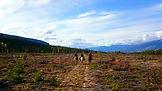 Horse riding in British Columbia