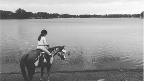 Ashley Hall – Equestrienne Decor                          Her Riding Habit - July 16, 2018