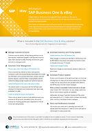 SAP Business One & eBay.jpg