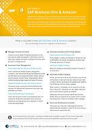 SAP Business One & Amazon.jpg