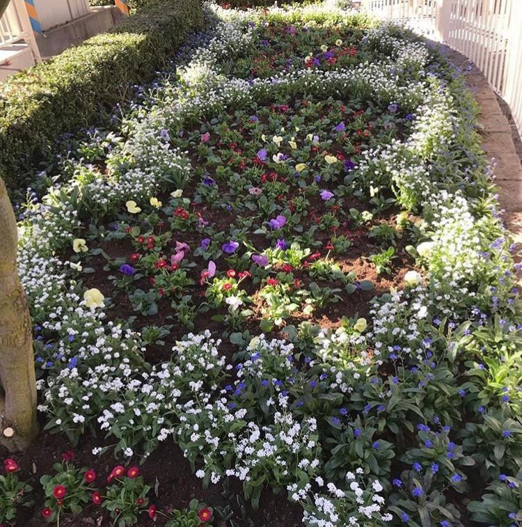 Gröna_Lund_plantering(6).jpeg