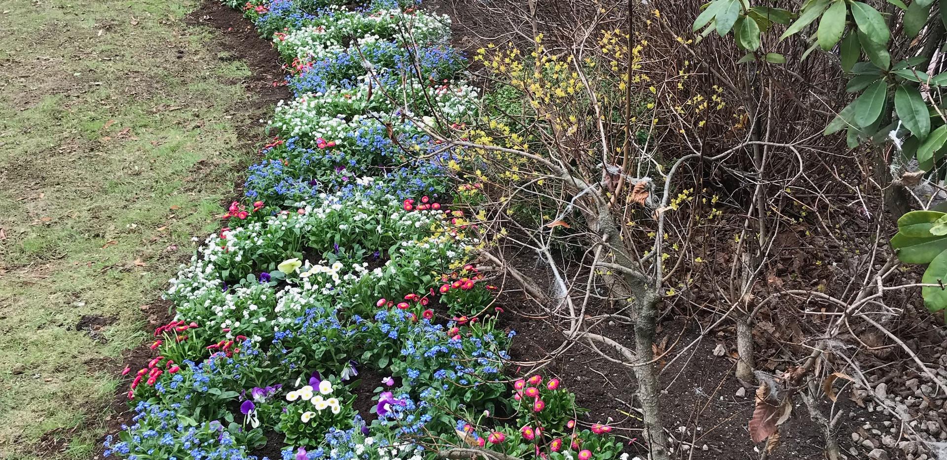 Gröna_Lund_plantering(3).jpeg