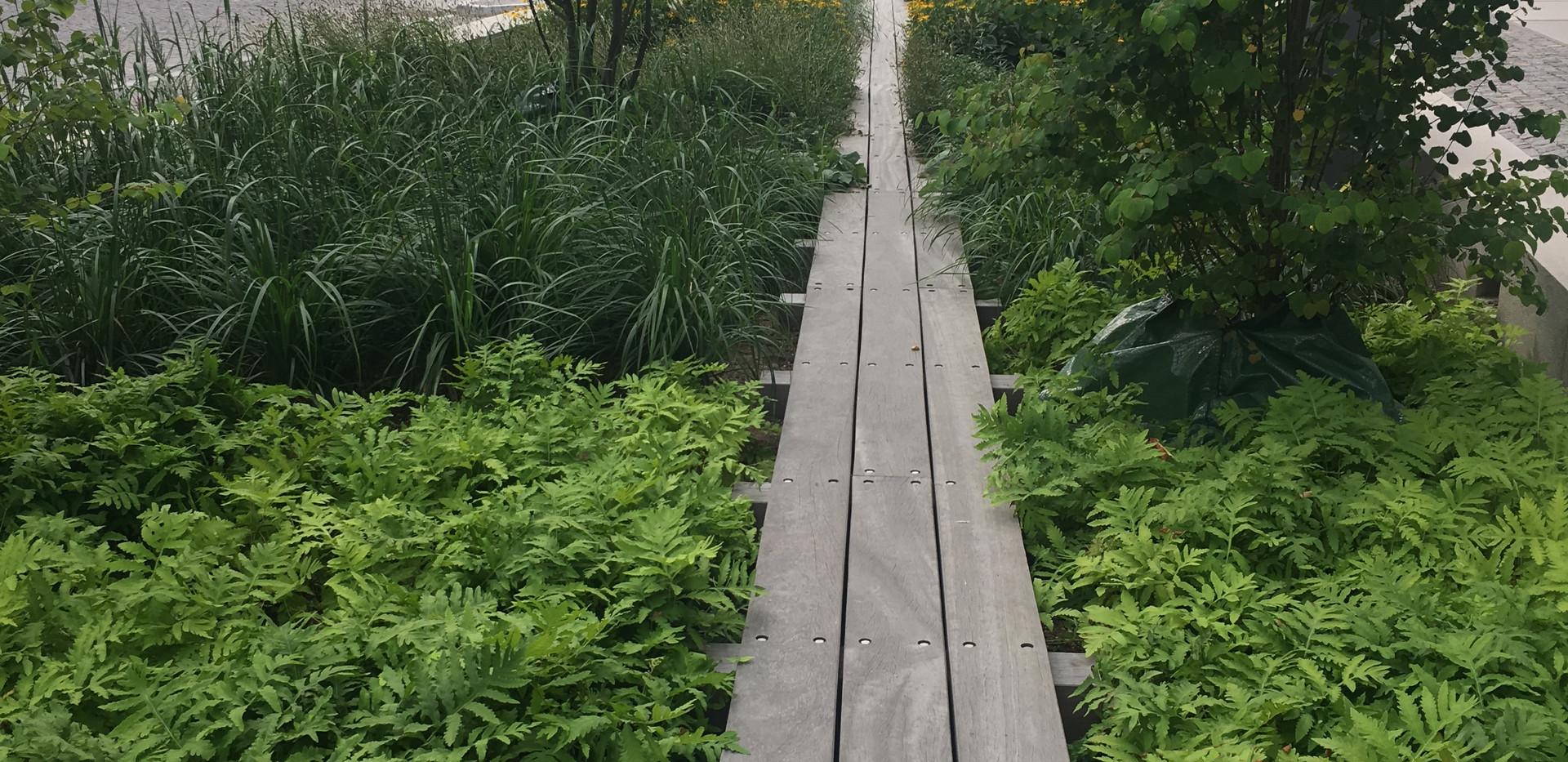 Plantering_Norra_Djurgårdsstaden.jpg