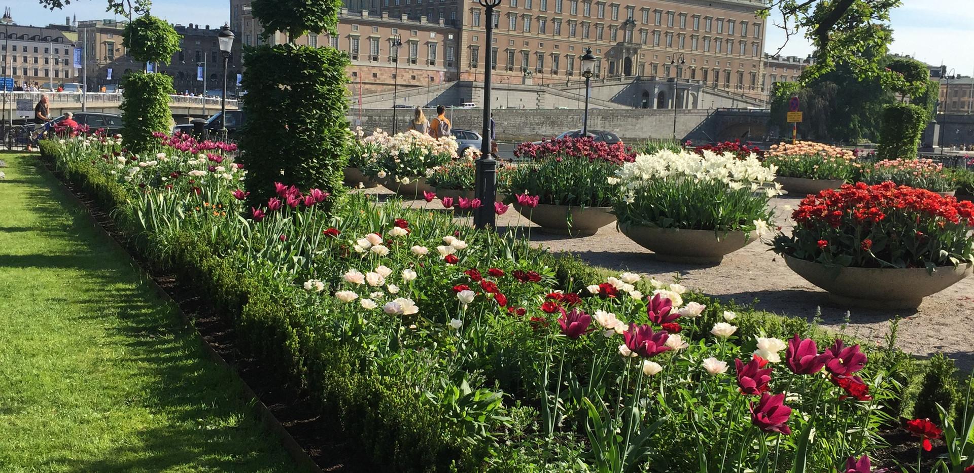 Kopia_av_Kopia_av_Kungsträdgården_plan