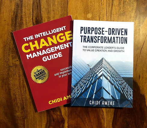 Chidi Ameke Purpose-Change Book.jpg