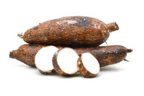 Yuca (maniok /cassava/tapioca)