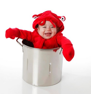 Little Red Lobster Sea Creature Baby Costume