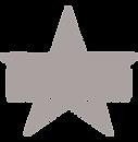 étoile_mus_argent.png