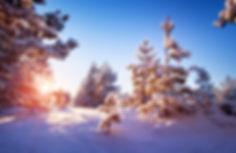 """Snowshoe at Chalet """"Les Cerises"""" French Alps, Haute-Savoie, Mont-Blanc"""