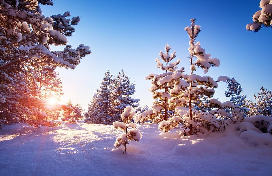 Raquette neige, montagne Megève, Cordon, location de vacances chalet les Cerises