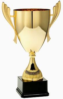 Pokal 8040 schlicht Henkel.jpg
