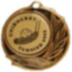 Medaille Delta.jpg