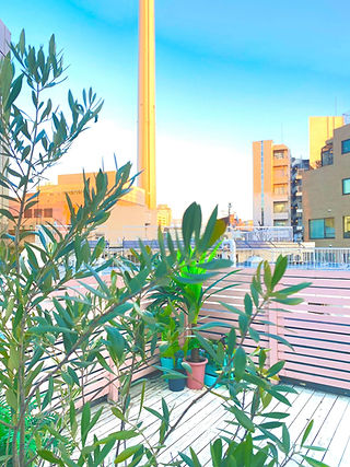 渋谷恵比寿代官山撮影屋上レンタルスペーススタジオスポットかいじゅうのひろば9.j