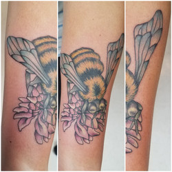 For the love of the Bees