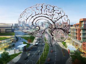 12 Principles of NeuroArchitecture and NeuroUrbanism