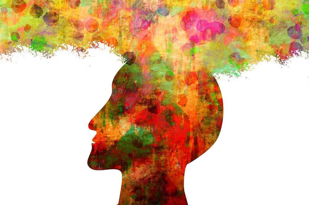 creativity and neuroarchitecture