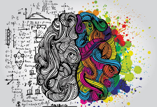 Cérebro criativo: neuroarquitetura