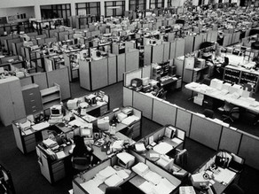 Workplaces and Brain Health: NeuroArchitecture Insights
