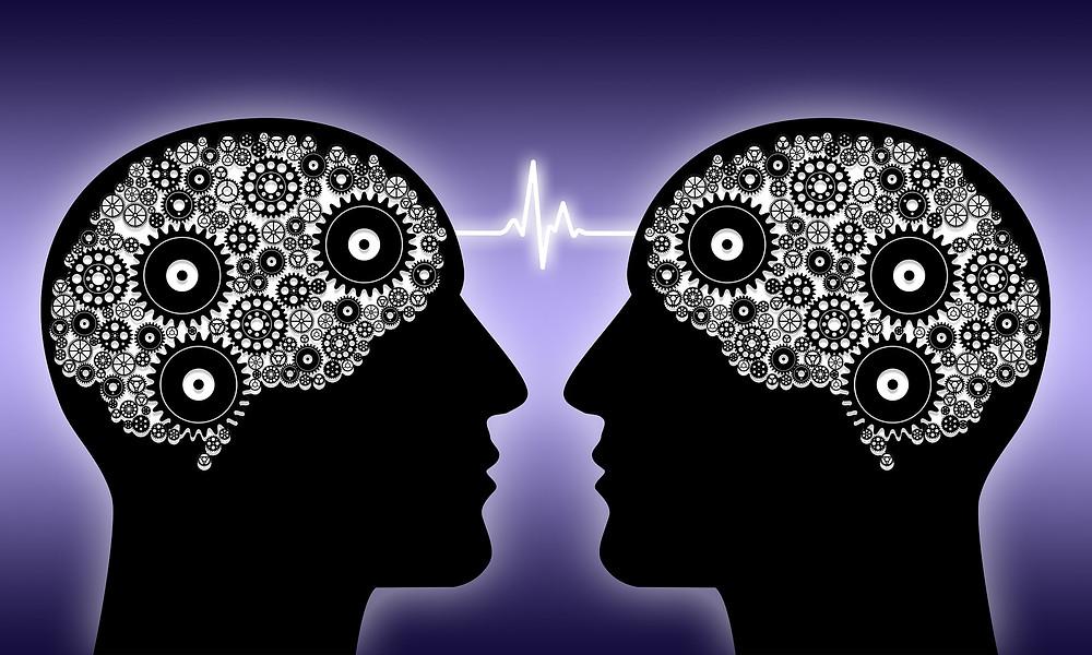 Empatia NeuroArquitetura