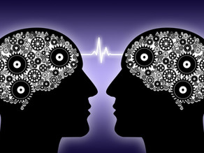NeuroArchitecture and Empathy: fuel to creativity