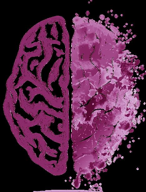 cerebro opçoes10.png