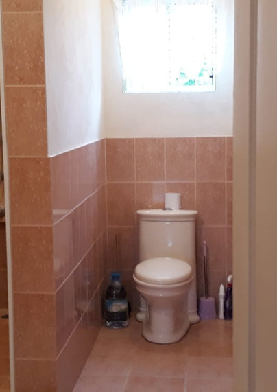 Toilet & Shower area