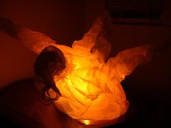fluxcore lamps 065