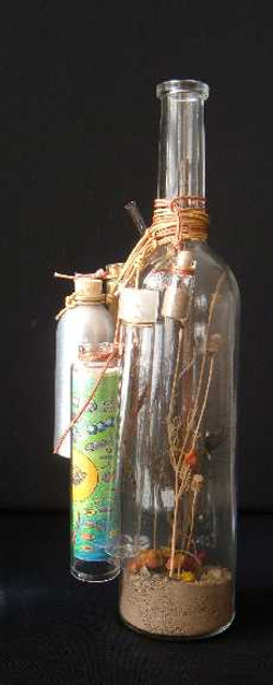 cin bottle left rs