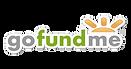 gofundme-logo-300x158.png