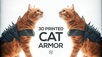 Cat Armor
