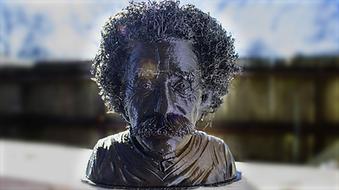 Hairy Einstein