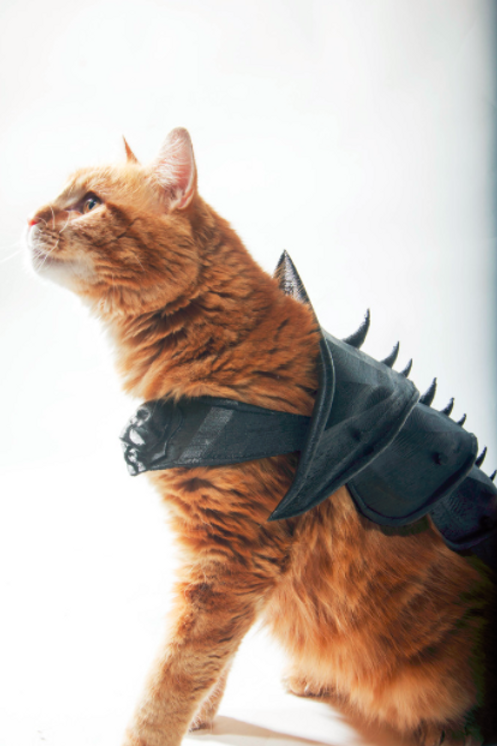 Cat Armor (3D Print Download)