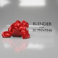 Blender for 3D Print