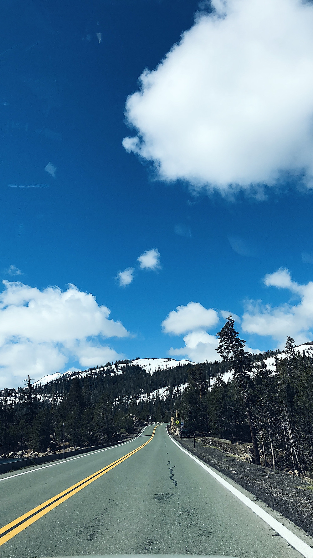 drive to san francisco from south lake tahoe