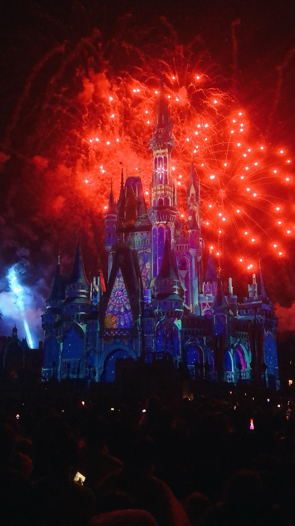 Disney Magic Kingdom Castle FIreworks Show