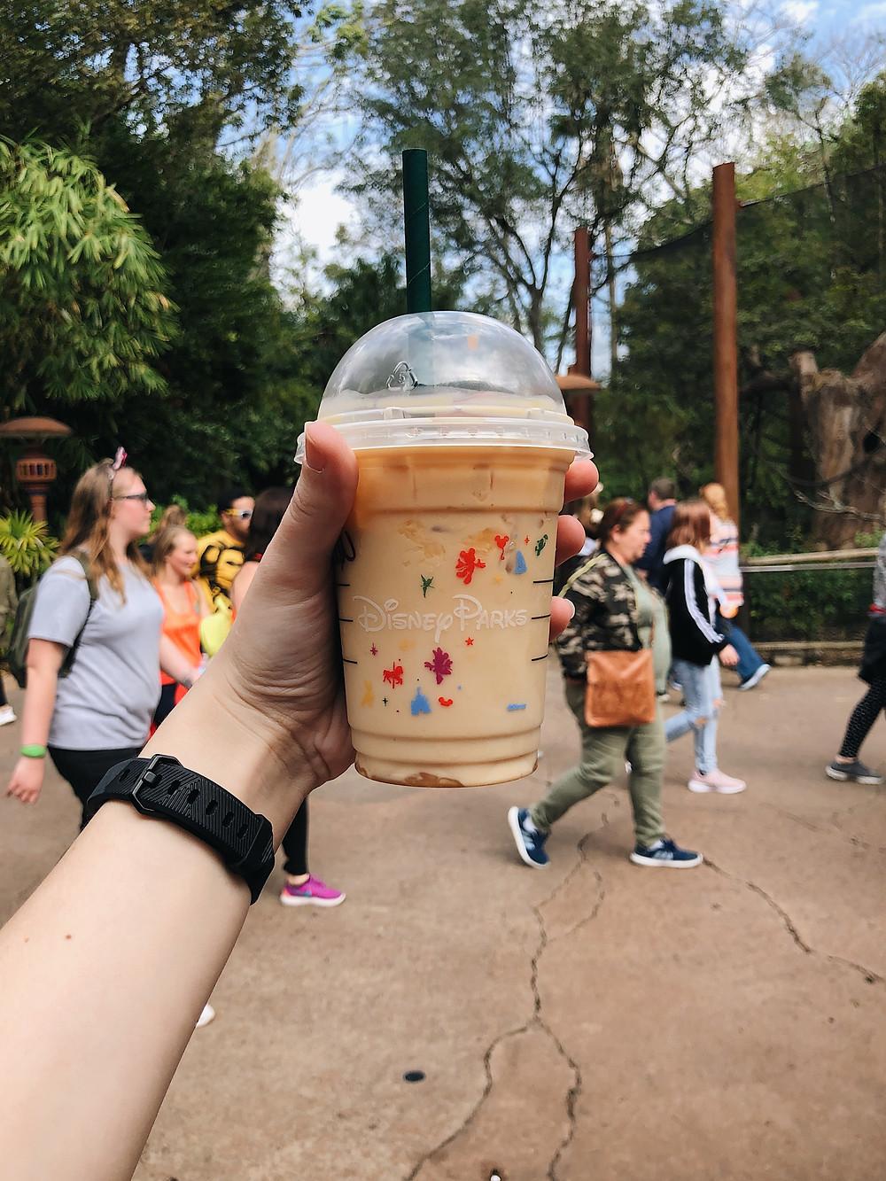 Starbucks Animal Kingdom Disney Parks