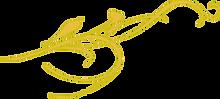 Golden Lines Design.png