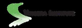 Vincera Institute Logo